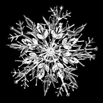 free-photo-snowflake-01.jpg