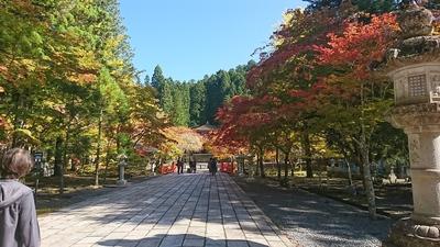 201710紅葉①.JPG