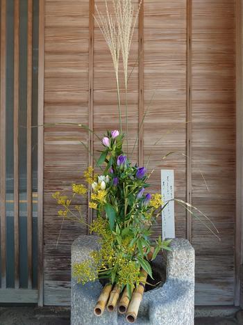 202109秋の花.JPG