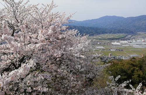 冨士山②.jpg