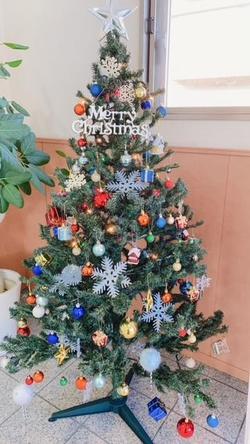 R2.12 クリスマスツリー.JPG