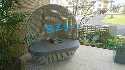 2017101310260200.jpg