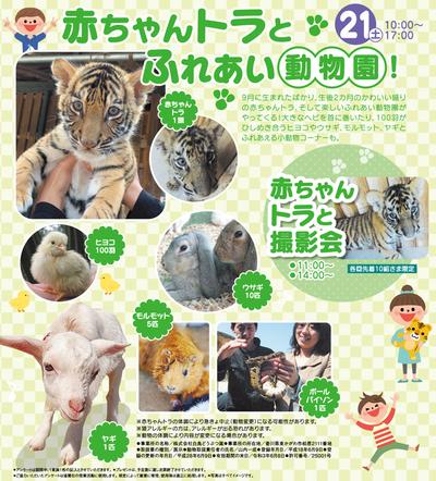 ブログ用トラ.png