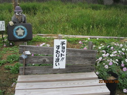 IMG_9939.JPGのサムネール画像