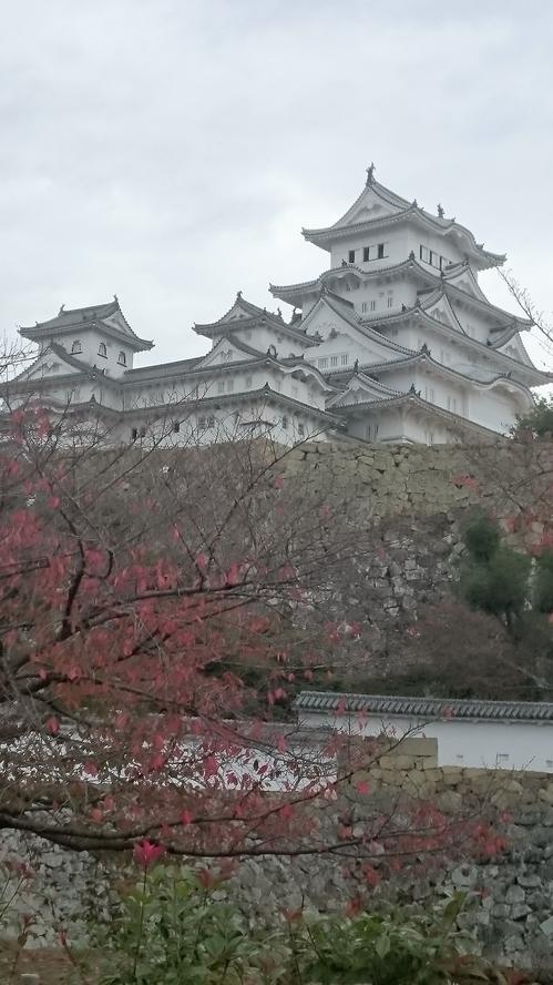 お城写真.JPG