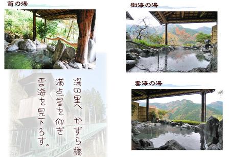 02ホテルかずら橋01.jpg